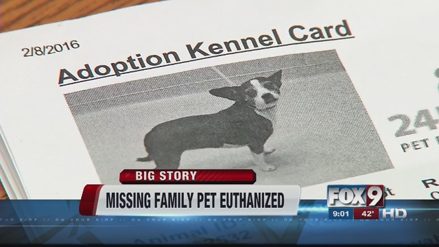 Family pet put down after filing missing report