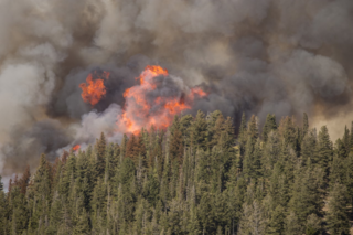 Pioneer Fire now spreading east of Highway 21