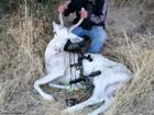 Rare albino buck shot by Emmett hunter