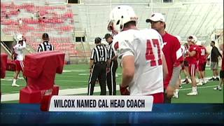 Wilcox named Head Coach for California