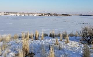 Antelope killed crossing frozen Idaho reservoir