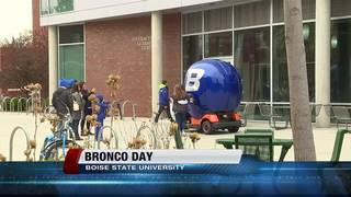 Ever wonder what it's like to be a Bronco?