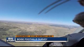 Aerial survey allows firefighters to prepare