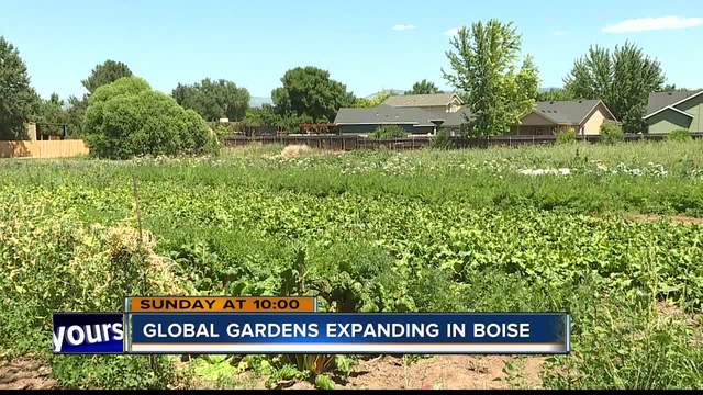 City Of Boise Making Room For Refugee Gardens