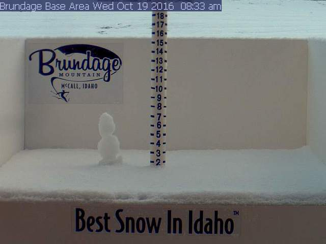 Bundage Snow Stick