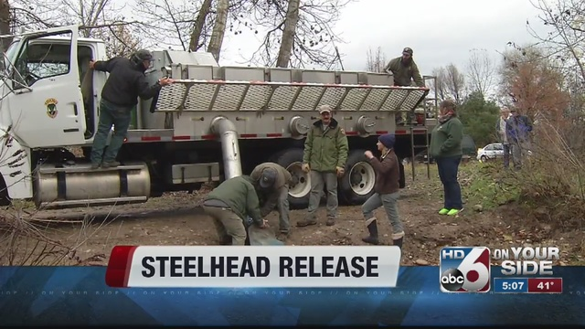 Idaho fish and game officials release steelhead into boise for Fish and game idaho