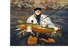Fish and Game seeks comments on steelhead season