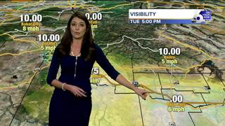 Dense Fog Advisory in place through Wednesday