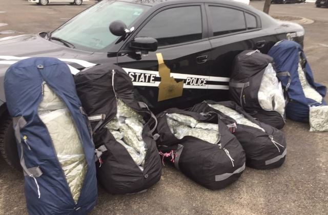 ISP Three Arrested In Two Days For Pot Trafficking
