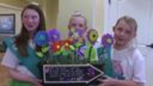 Girl Scouts victims of crimes during cookie sale season