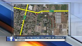 Stabbing victim found collapsed on sidewalk