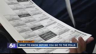Idaho Primary Voting 101