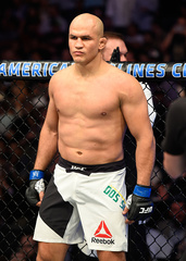 Dos Santos and Vick ready for UFC Fight Night