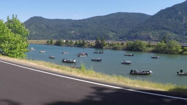 Late salmon run brings optimism for a possible summer for Idaho fish and game phone number