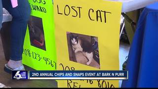 Chips and Snaps event at Bark n Purr in Boise