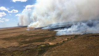NIFC: Campers likely started massive Nevada fire