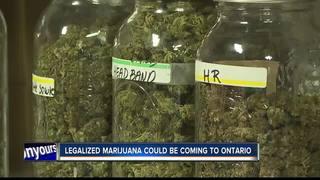 Ontario group works to legalize marijuana sales