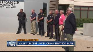 Agencies joining forces to fight opioid crisis