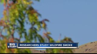 Researchers study wildfires impact on pollution