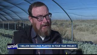 Idaho inmates grow sage brush