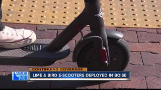 Lime and Bird scooters launch in Boise