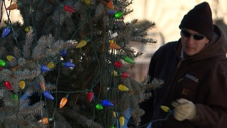Crews decorating Capitol Christmas Tree